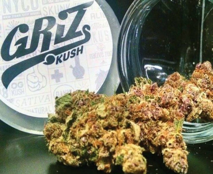 Griz Kush